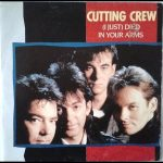 Cutting Crew - Died in Your Arms