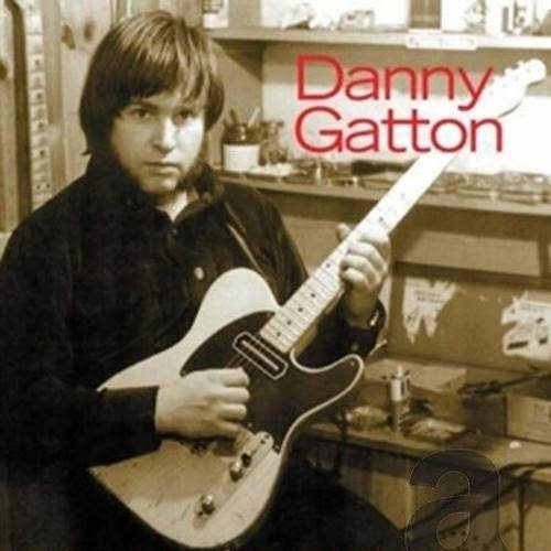 Danny Gatton - Sleepwalk