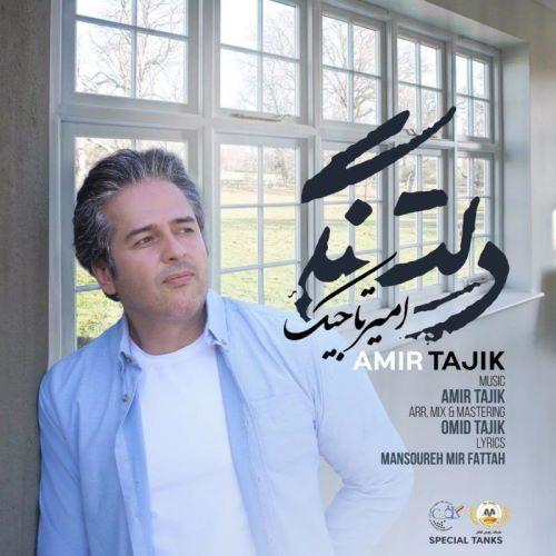امیر تاجیک - دلتنگی