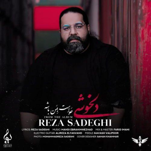 رضا صادیقی - دلخوشی