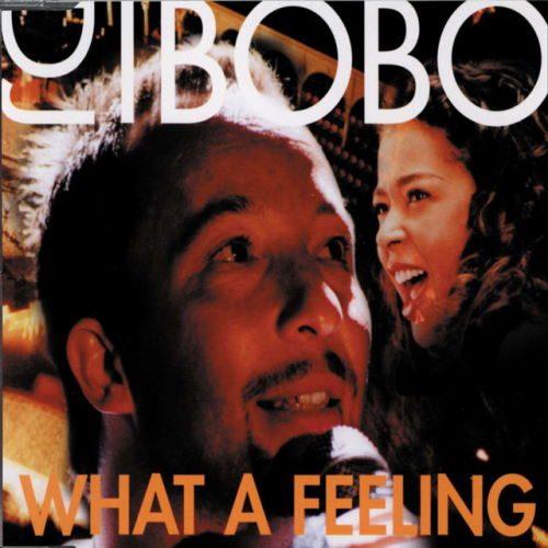 دانلود آهنگ DJ BoBo - What a Feeling